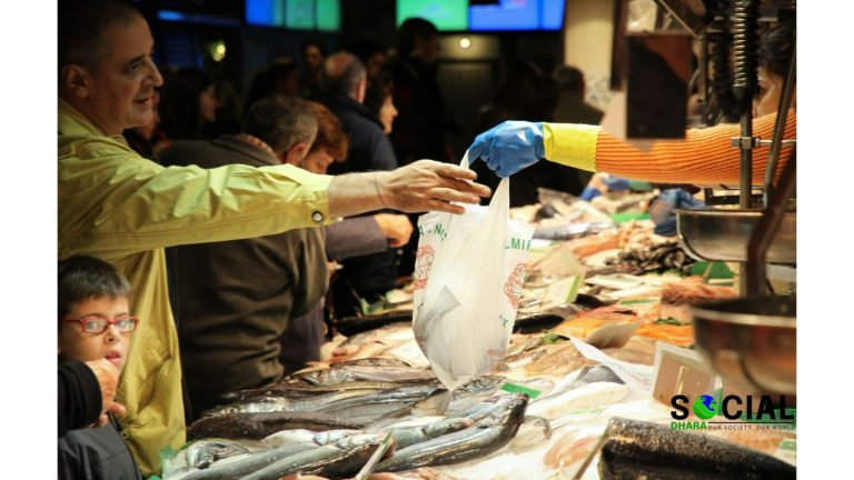 Example: How to write an OBSERVATION EXERCISE (the Fish market)