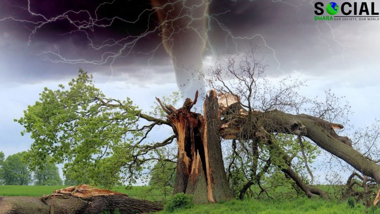 Effects of Natural Disasters in Human Lives