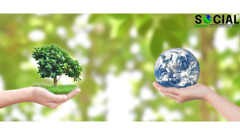 Importance of Environment to Human Life