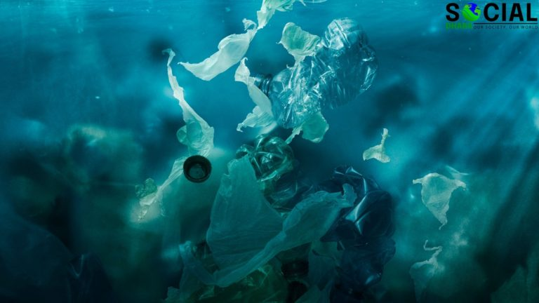 Plastic Pollution: World is Drowning in Plastic Pollution